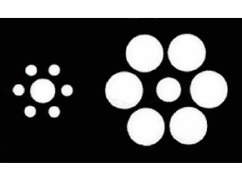 האם שני העיגולים המרכזיים שווים בגודלם?