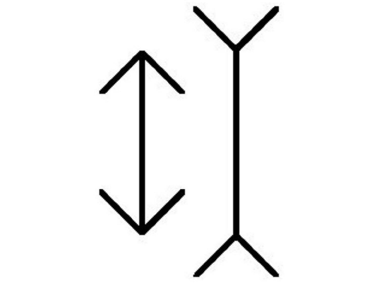 האם הקווים האנכיים שווים בגודלם?